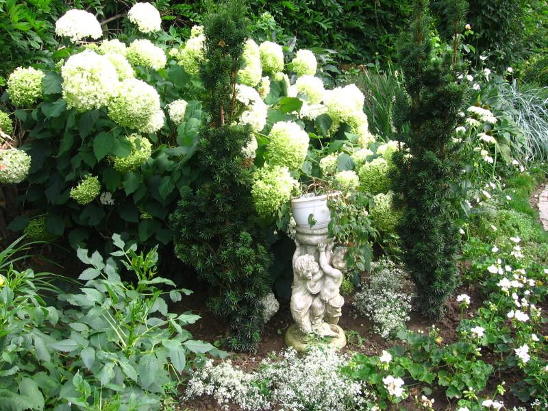ogród angielski, style ogrodowe, drzewa, hortensja bukietowa, romantyczna figurka, urządzanie ogrodu, aranżacje z roślin, galeria ogrodowa
