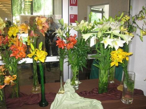 kwiaty lata, kwiaty do ogrodu, lilie