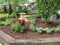 piwonia lekrska, kwiaty przełomu maja i czerwca, zdjęcia ogrodów, galeria ogrodowa