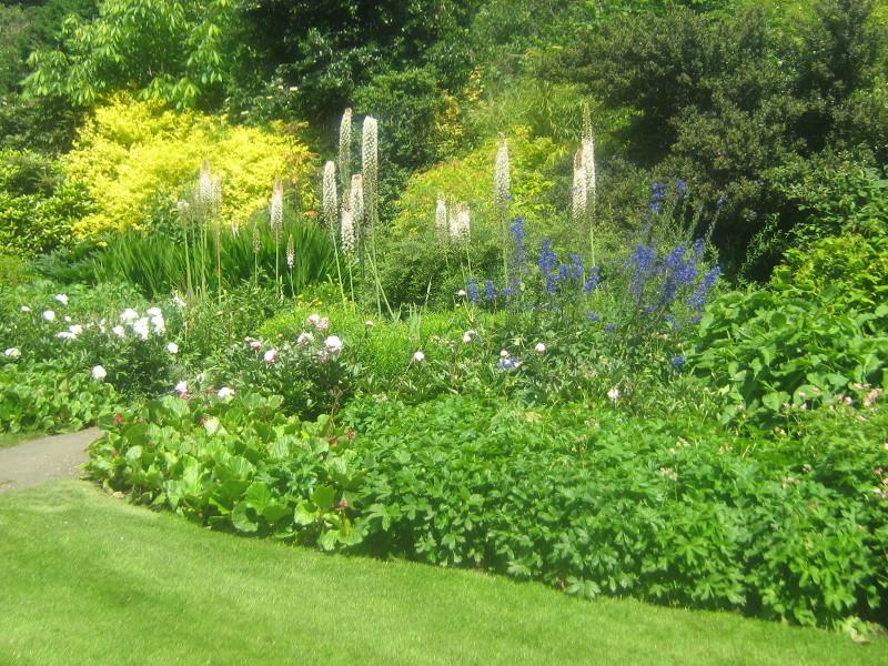ogród angielski, ogrody ogrody , dziki zakatek, urządzanie ogrodu, aranżacje z roślin, galeria ogrodowa