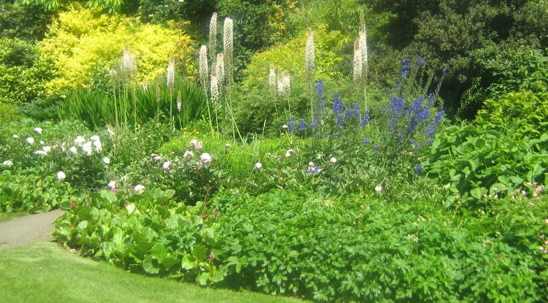 ogród , rośliny do ogrodu, style ogrodowe, ogród angielski, ogrodnik-amator.pl