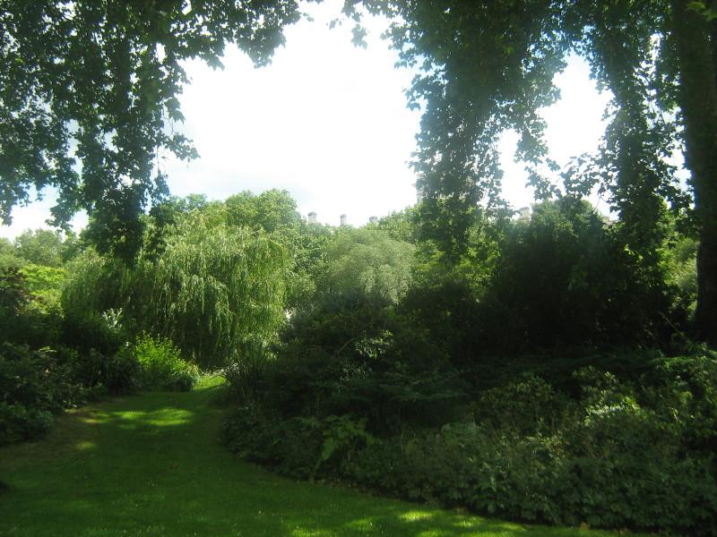 ogród angielski, ogrody ogrody , park w stylu angielskim, urządzanie ogrodu, aranżacje z roślin, galeria ogrodowa