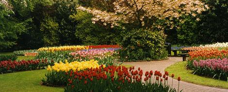 Ogrody cebulowe Keukenhof w Lisse, piękne ogrody Europy, ogrody parki w Polsce,