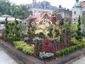 Pszczyna wystawy  ogrodnicze, ogrodnik-amator, kompozycje ogrodowe, ogród chiński