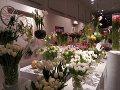 wystawa tuliapnów w Wlianowie, oranżeria, tulipany, dodatki ogrodowe, urządzanie  ogrodu , zdjęcia ogrodów, dodatki  ogrodowe, galeria ogrodowa, ogród ozdobny
